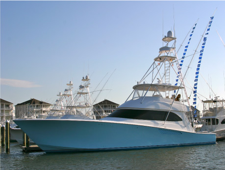 Record Billfish Day