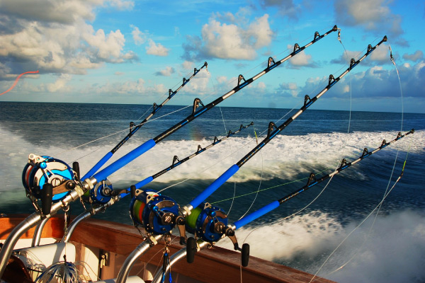 Sportfishing Rods and Reels